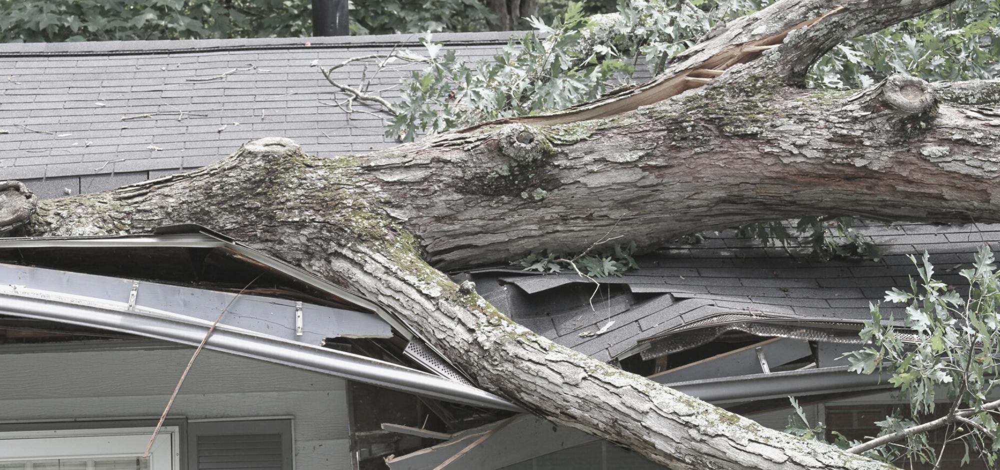 Les catastrophes naturelles ne sont pas couvertes par la garantie sur le bardeau